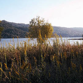 Simply Quiet - Lake Hemet by Glenn McCarthy Art and Photography