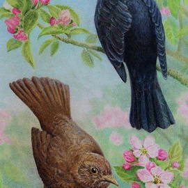 Elaine Jones - Sing to Me Mister Blackbird