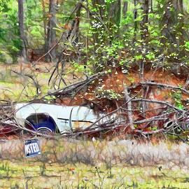 Sinking abandoned car by Jeelan Clark