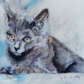 Beverley Harper Tinsley - Skitty