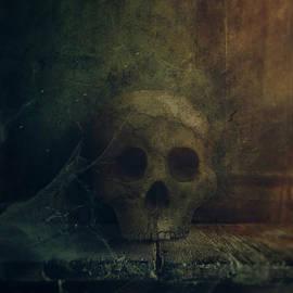 Mythja Photography - Skull