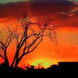 Douglas Settle - Sky on Fire