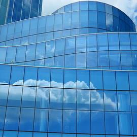 Arlane Crump - Sky Reflections