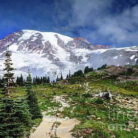 Skyline Trail by Deborah Klubertanz