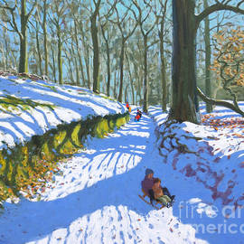 Sledging through the woods - Andrew Macara
