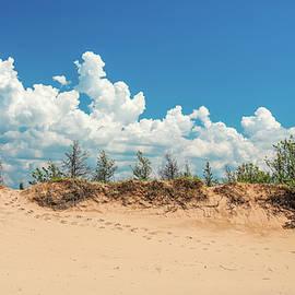 Sleeping Bear Sand Dune Footprints by Dan Sproul