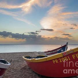 Paul Quinn - Sleeping boats on the beach