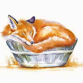 Sleeping Fox by Debra Hall