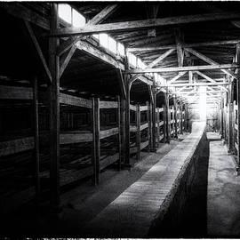 Doug Matthews - Sleeping Quarters at Birkenau