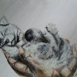 Judit Szalanczi - Sleeping wolf