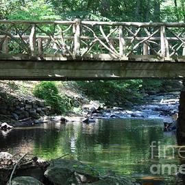 Sleepy Hollow Bridge And Stream by John Telfer