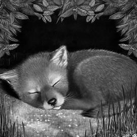 Miki Krenelka - Sleepy Hollow