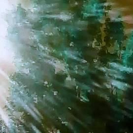 Lisa Simmons - Sleepy Sunset