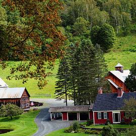 Bill Morgenstern - Sleepy Hollow Farm
