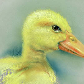 MM Anderson - Sly Little Duckling