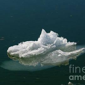 Small Iceberg  by Les Palenik