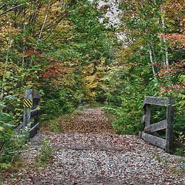 Jeff Folger - Small trestle along rail trail
