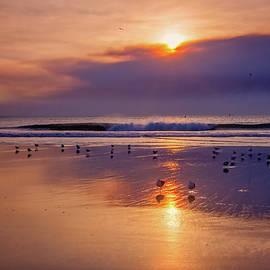Lynn Bauer - Smokey Reflections in Ventura