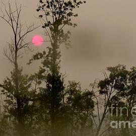 Frank Townsley - Smokey Sunrise