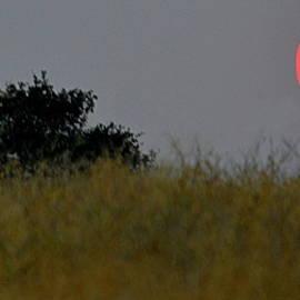 Smokey Sunset by AJ Schibig