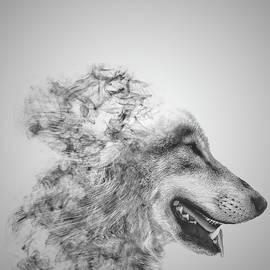 Smokey Wolf - Martin Newman
