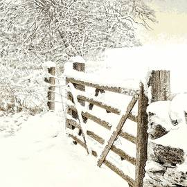 Snow on a gate by Alwyn Dempster Jones