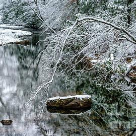 Thomas R Fletcher - Snow along Cranberry River