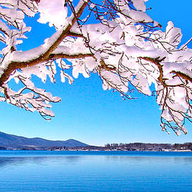 Snow Branch Smith Mountain Lake by The American Shutterbug Society