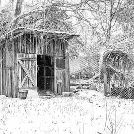Snow Covered Chicken House by Scott Hansen