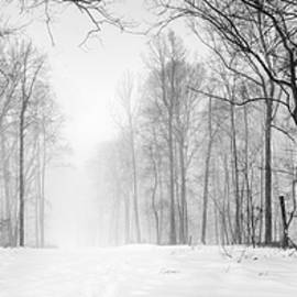 Paul Gretes - Snow Covered Trail