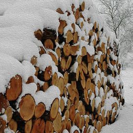 Kathy Carlson - Snow-covered Wood Pile with Oil Painting Filter
