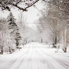 Snow Day by Enzwell Designs