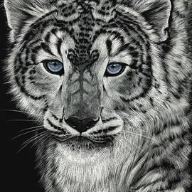 Snow Dragon Leopard - Stanley Morrison