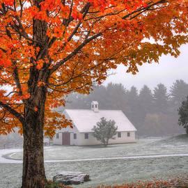 Joann Vitali - Snow Dust over Autumn Foliage
