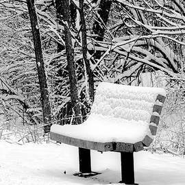 Karen Majkrzak - Snow in Black and White