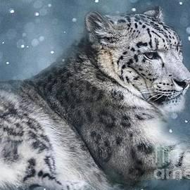 Geraldine DeBoer - Snow Leopard