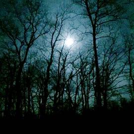 Loretta Luglio - Snow Moon