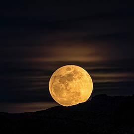 Saija Lehtonen - Snow Moon Rising