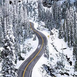 Pavel Gorbachov - Snow road...