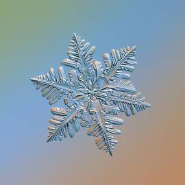 Alexey Kljatov - Snowflake macro photo - 13 February 2017 - 5