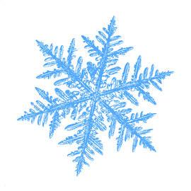 Alexey Kljatov - Snowflake vector - Silverware white