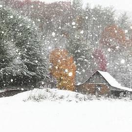 Benanne Stiens - Snowy Barn