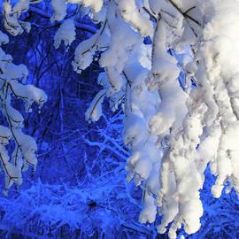 Snowy Blue Morning