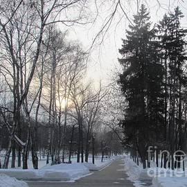 Anna Yurasovsky - Snowy Crossroads