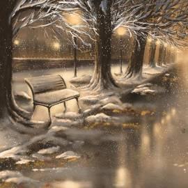 Veronica Minozzi - Snowy night