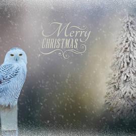 Cathy Kovarik - Snowy Owl Christmas Greeting