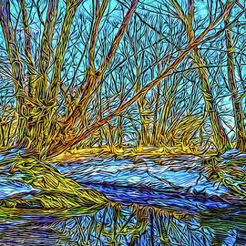 Joel Bruce Wallach - Snowy Stream Reflections