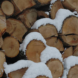 Snowy Wood Pile Closeup by Kathy Carlson