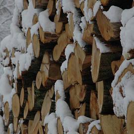 Kathy Carlson - Snowy Wood Pile
