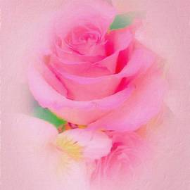 So Soft Rose by Diane Lindon Coy